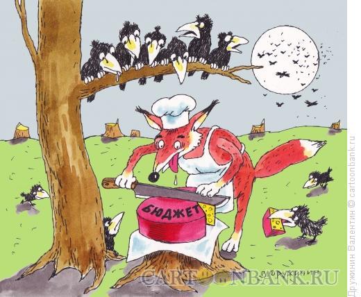 Карикатура: Бюджет, Дружинин Валентин