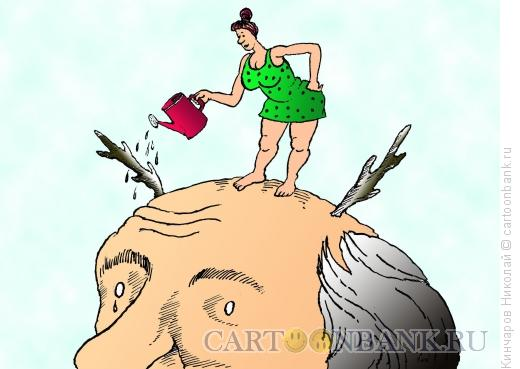 Карикатура: Заботливая жена, Кинчаров Николай