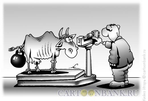 Карикатура: Откорм скота, Кийко Игорь