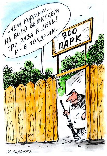 Карикатура: зоопарк, михаил ларичев