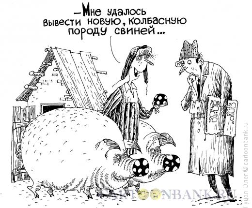 Карикатура: Свиноводство, Гуцол Олег
