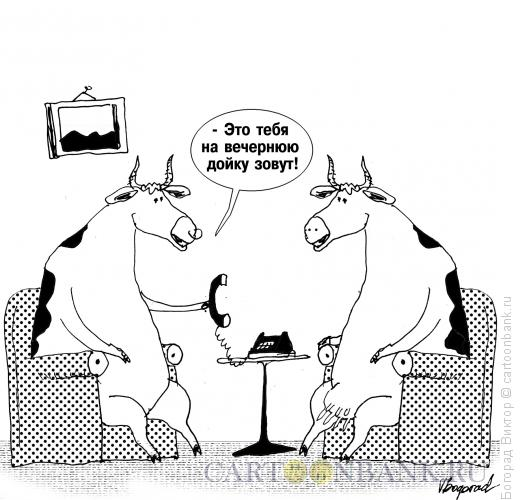 Карикатура дойка