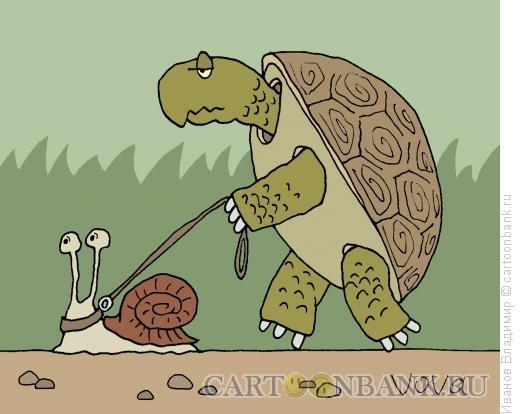 Карикатура: Черепаха и улитка, Иванов Владимир