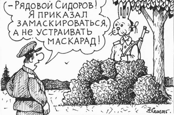 Карикатура, Семеренко Владимир Николаевич