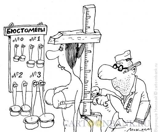 Карикатура: Бюстомер, Воронцов Николай