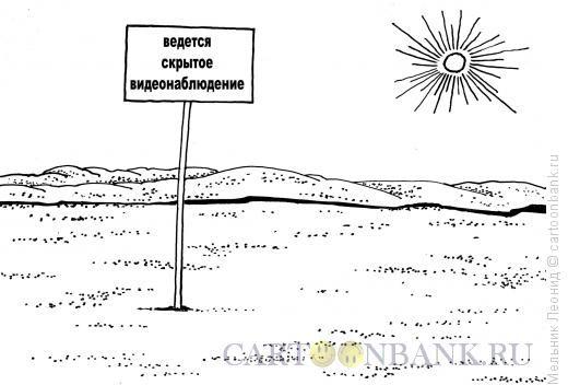 Карикатура: Видеонаблюдение, Мельник Леонид