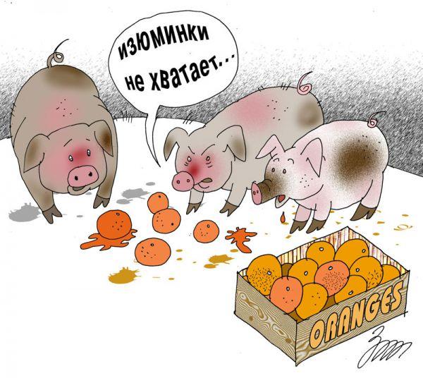 Карикатура: Изюминки не хватает, Татьяна Зеленченко