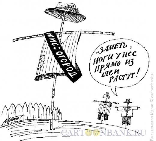 Карикатура: Пугало, Валиахметов Марат