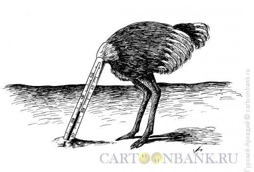 Карикатура: страус, Гурский Аркадий