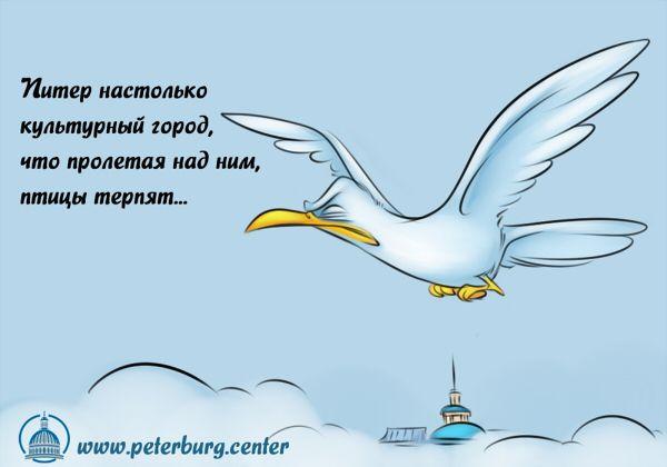 Карикатура: Птицы терпят, Эфен Гайдэ