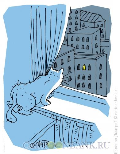Карикатура: кот на окне, Кононов Дмитрий
