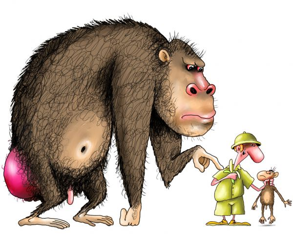Карикатура: обезьяна6, Ануфриев