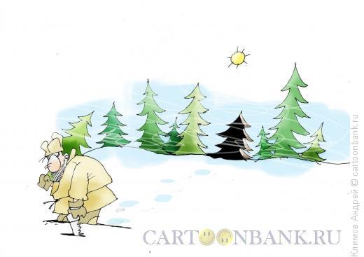 Карикатура: Елка, Климов Андрей