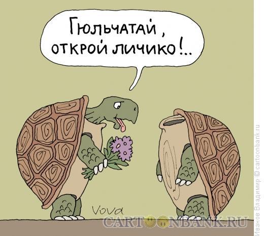 Карикатура: Открой личико, Иванов Владимир