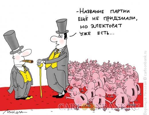Карикатура: Электорат, Воронцов Николай
