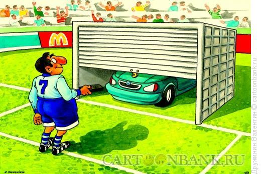 Карикатура: Ворота, Дружинин Валентин