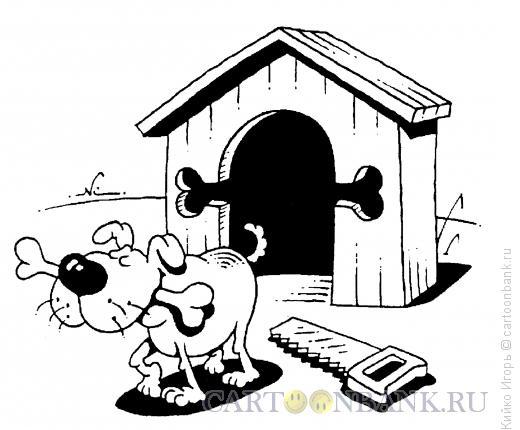 Карикатура: Любимая кость, Кийко Игорь