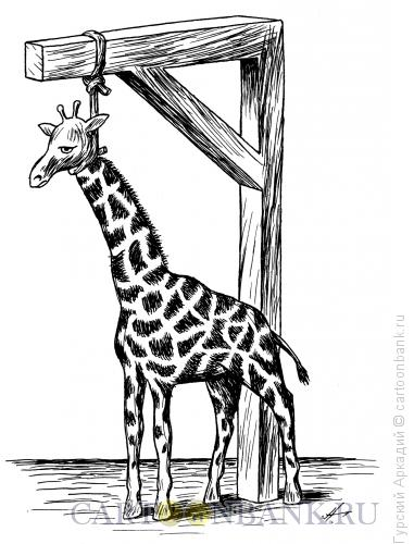 Карикатура: жираф, Гурский Аркадий