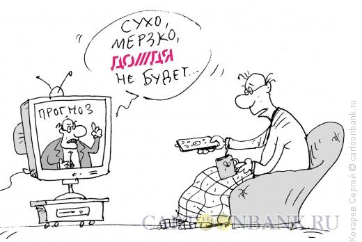 Карикатура: прогноз, Кокарев Сергей