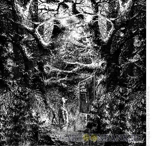 Карикатура: Информационный щит в лесу, Богорад Виктор