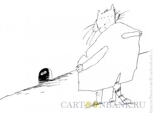 Карикатура: Кот-эксгибиционист, Шилов Вячеслав