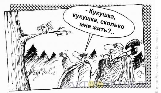 Карикатура: Кукушка, Шилов Вячеслав
