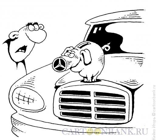Карикатура: Свинка на капоте, Кийко Игорь