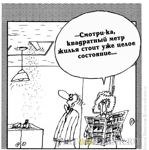 Карикатура: Метр жилья, Шилов Вячеслав