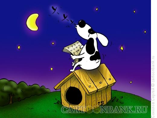 Карикатура: песня собаки, Соколов Сергей