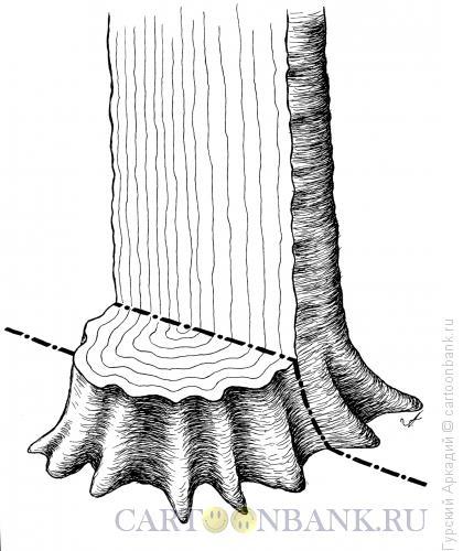 Карикатура: дерево-граница, Гурский Аркадий