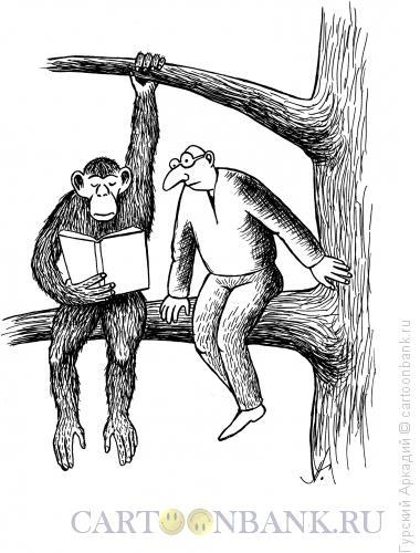 Карикатура: обезьяна с книгой, Гурский Аркадий