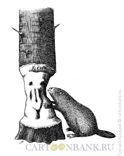 Карикатура: бобр у дерева, Гурский Аркадий