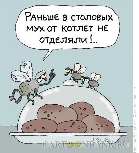 Карикатура: Мухи и котлеты, Иванов Владимир