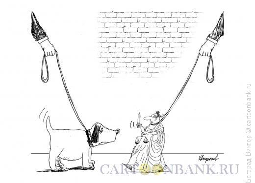 Карикатура: Прогулка с Фемидой, Богорад Виктор