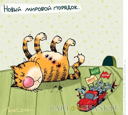 Карикатура: Новй мировой порядок, Воронцов Николай