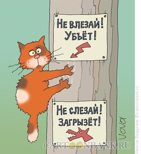 Карикатура: Ограничения, Иванов Владимир