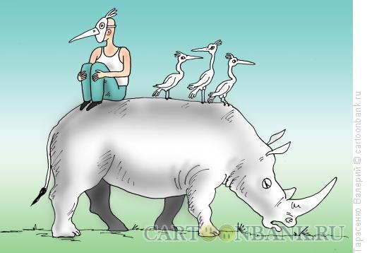 Карикатура: Слепой носорог, Тарасенко Валерий