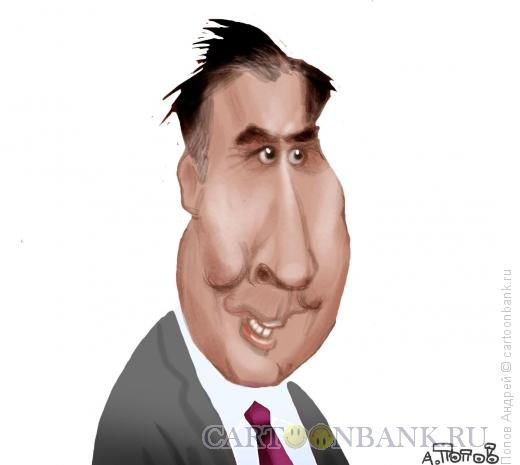 Карикатура: Саакашвили Михаил Николозович, Попов Андрей