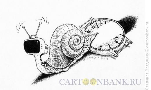 Карикатура: Странная улитка, Степанов Владимир