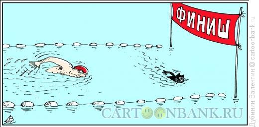 Карикатура: Плохая примета, Дубинин Валентин