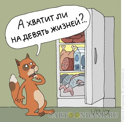 Карикатура: Кот у холодильника, Иванов Владимир