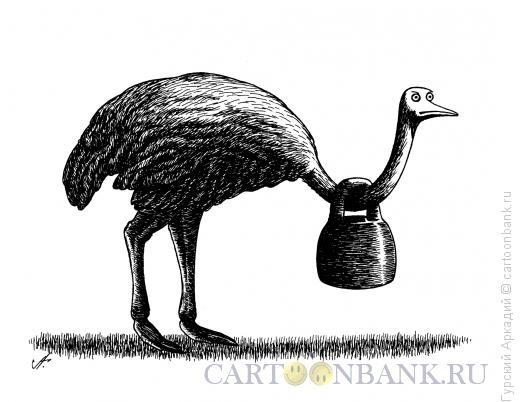 Карикатура: страус с гирей, Гурский Аркадий