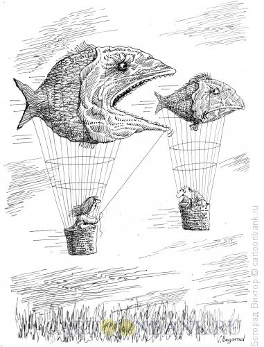 Карикатура: Погоня за женихом, Богорад Виктор