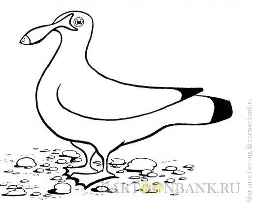 Карикатура: Удивительная чайка, Мельник Леонид