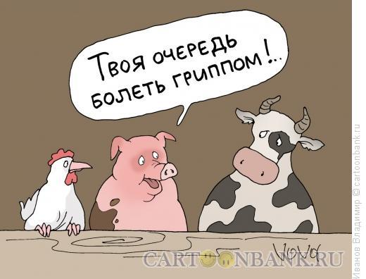 Карикатура: Грипп на подходе, Иванов Владимир