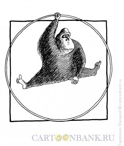 Карикатура: Человекоподобие, Тарасенко Валерий