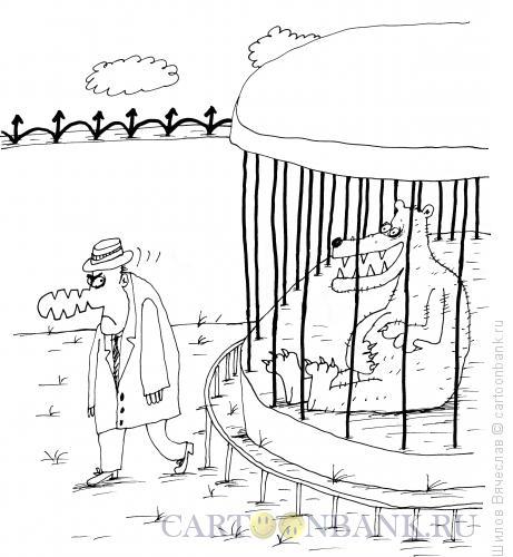 Карикатура: Укушенный медведем, Шилов Вячеслав