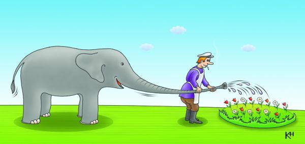 Карикатура: Тихий дворик, слон и дворник, Александр Кузнецов