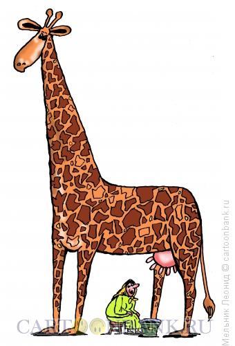 Карикатура: И как его доить?, Мельник Леонид