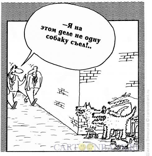 Карикатура: Недовольные собаки, Шилов Вячеслав